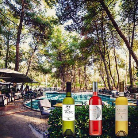 Οι δρόμοι του σαμιώτικου κρασιού στο Piu Verde Άλσος Παπάγου